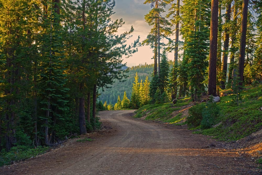 Dirt roads on Shasta-Trinity National Forest lead to great sites for dispersed camping.